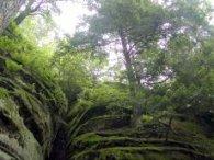 Odpoczynek na Podlasiu powiązane jest z wykorzystaniem atutów środowiska naturalnego