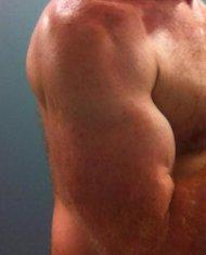 mięśnie