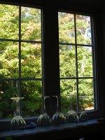 okno kuchnia 2